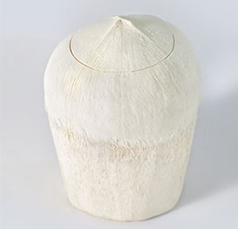 Semi-Polished Thai Style Fresh Cut Coconut