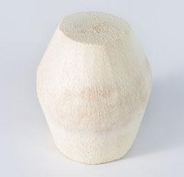 Slim Cut Fresh Coconut